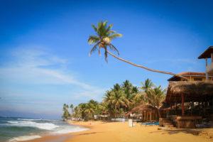 Шри-Ланка - инструкция перед вылетом на отдых
