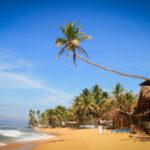 Шри-Ланка – инструкция перед вылетом на отдых